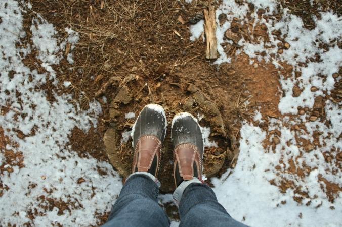 ll bean boots on stump