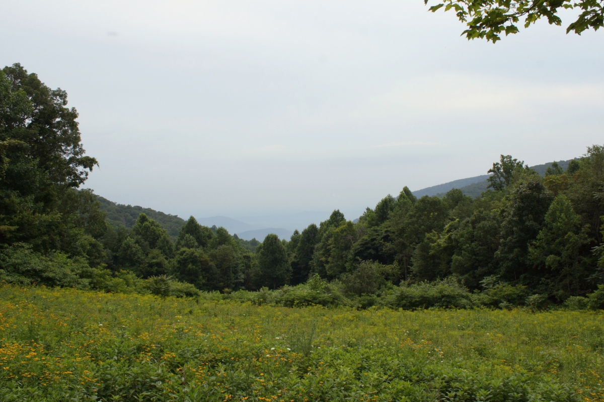 blue ridge moutains