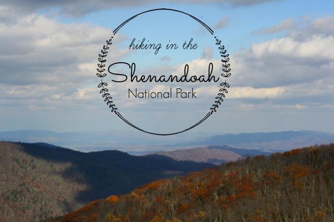 hike shenandoah national park