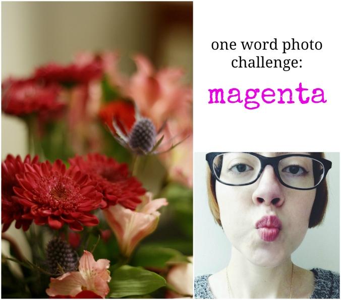 one word photo challenge magenta